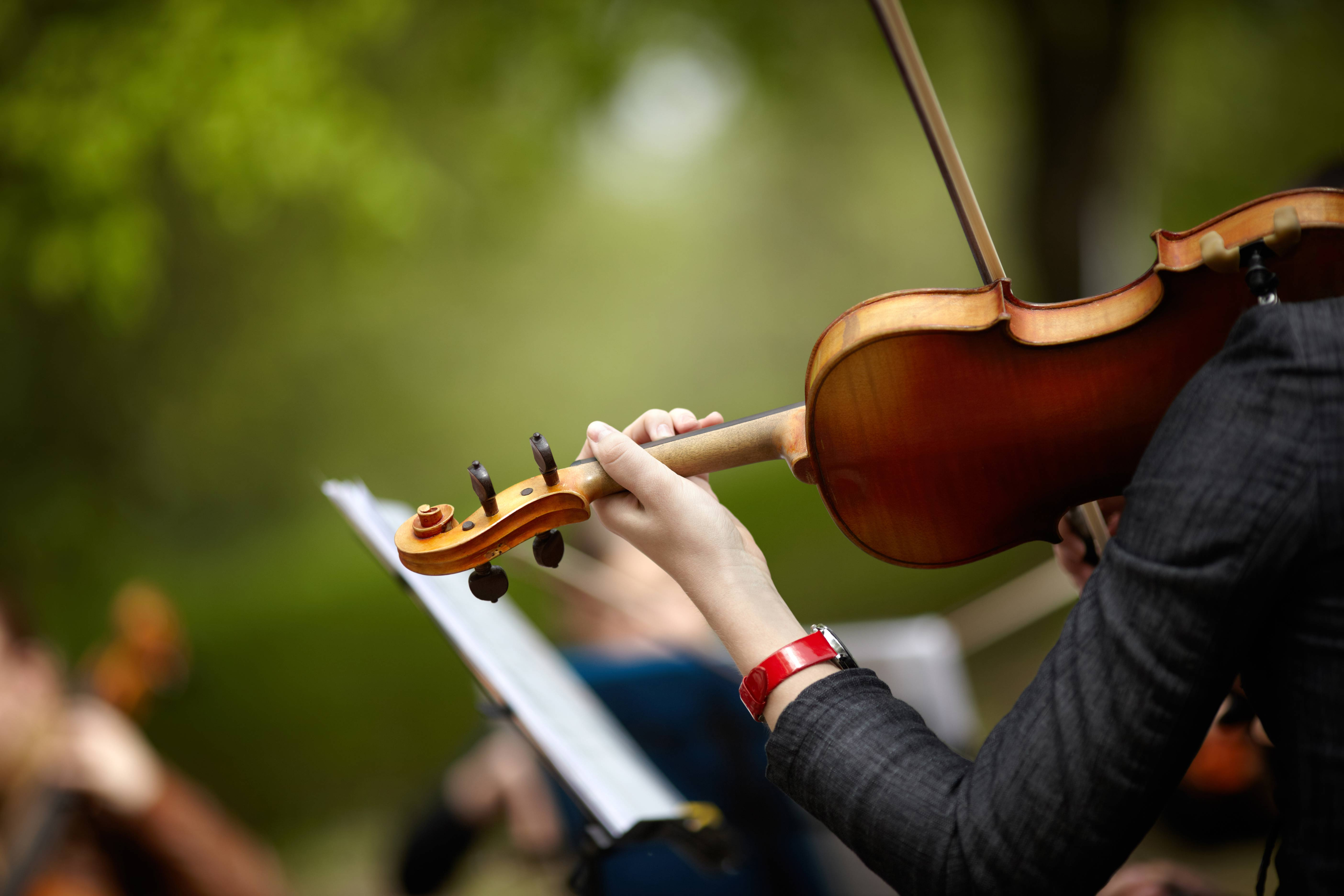 violin-bg